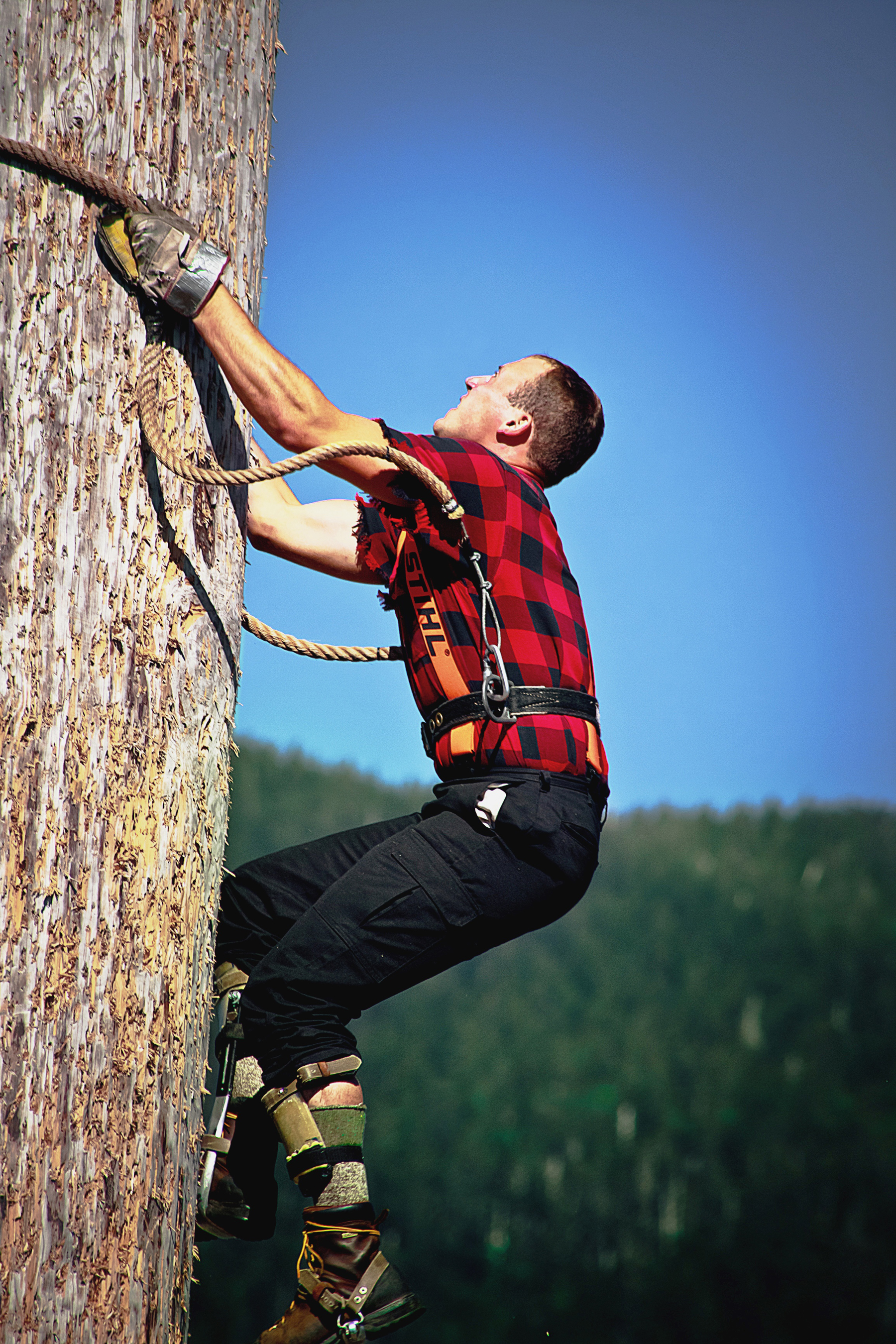51180-Lumberjack-Feud-athlete-demonstrates-his-climbing-skills-original