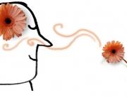 smelling-cartoon-head